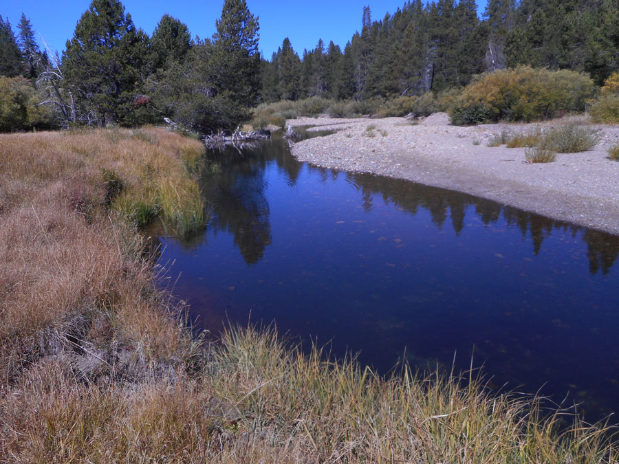 A deep blue pool, with gravel on one side and tall grass on the other.