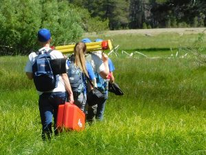 Several people carrying equipment walk single-file through a meadow of tall grass toward trees at the back.