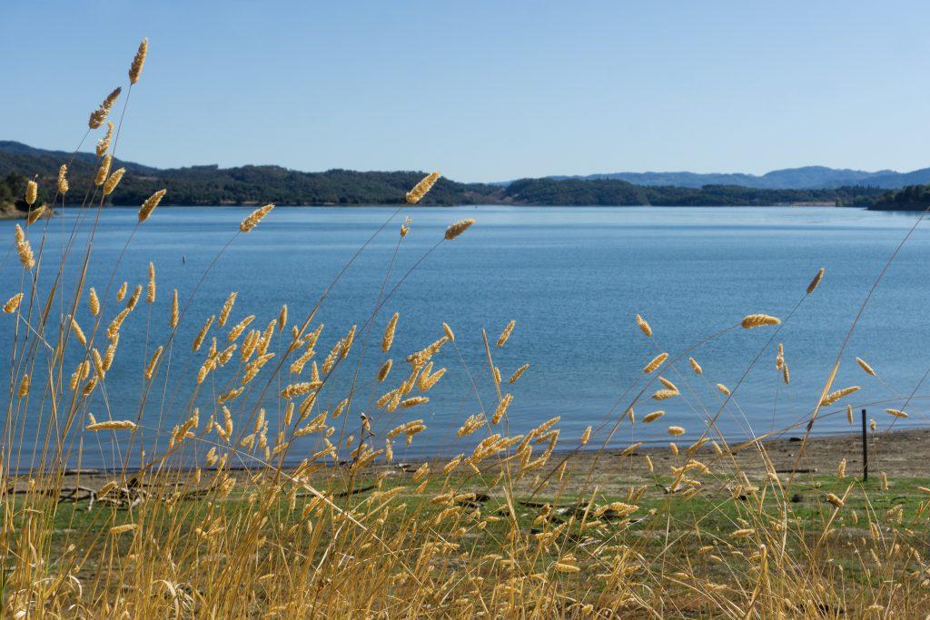 Lake Mendocino, California