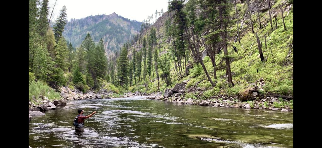 An angler enjoys the fishing on the East Fork South Fork Salmon River