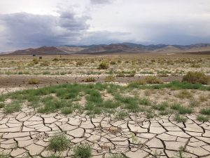 extremely dry and cracked solid spans across the Nevada wilderness