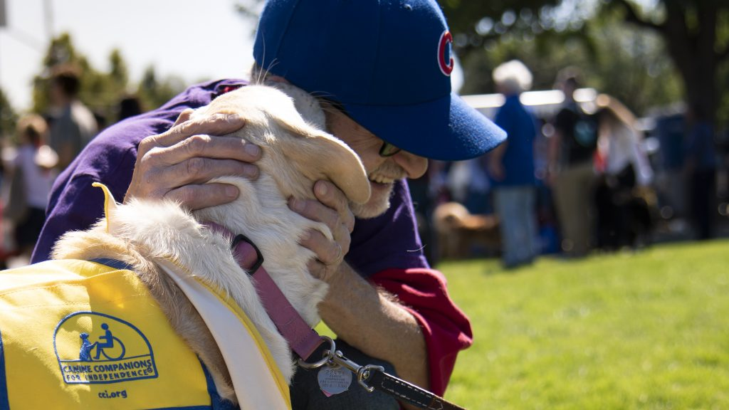 A man pets his therapy dog