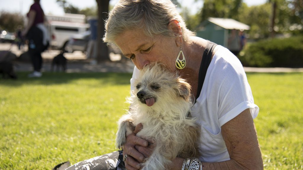 A woman holds her small, white, fluffy dog, as it sits there with its tongue sticking out