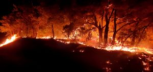 A wildfire raging