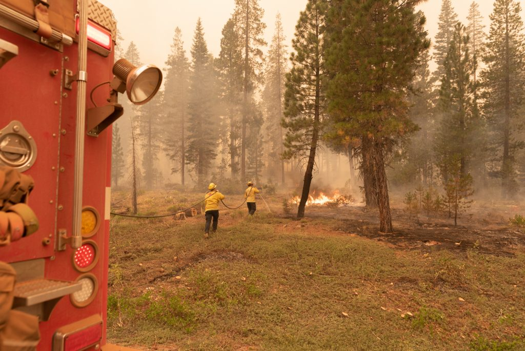 Two firefighters carry a hose from a red firetruck towards a flame in the forest.