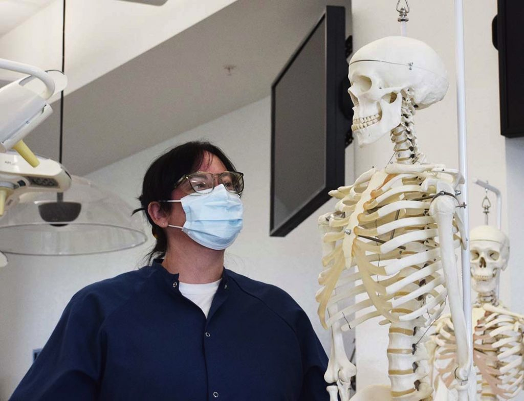 Lab manager Lindsay Pisani looks up at a hanging anatomical model of a human skeleton in the gross anatomy lab.